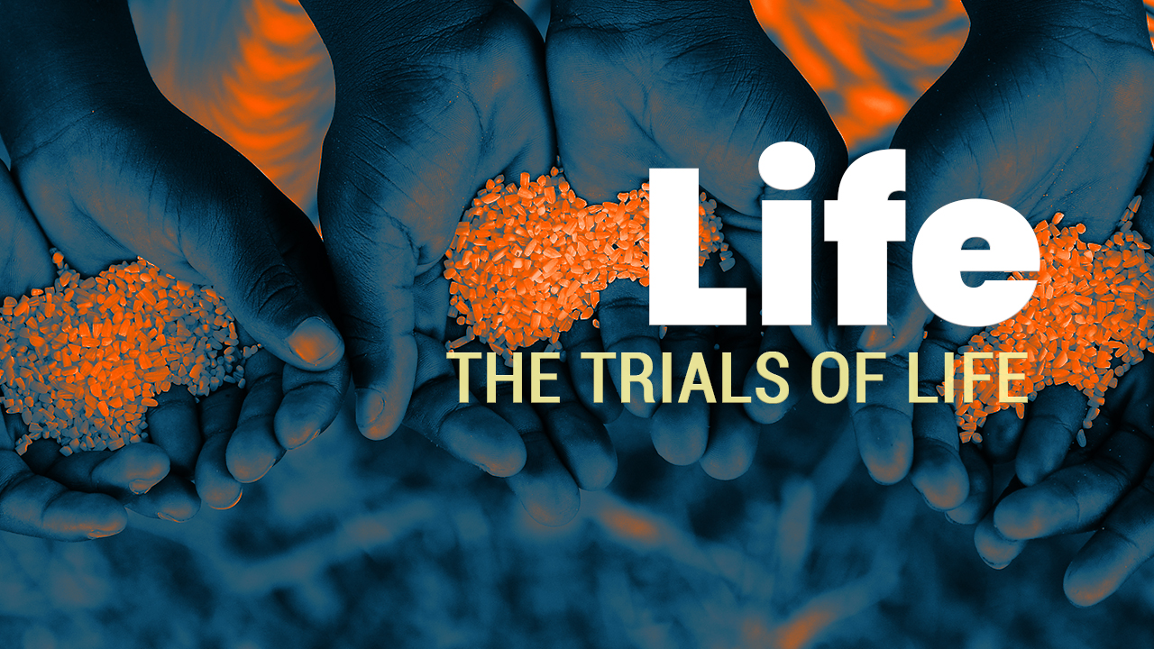 Life | The Trials of Life